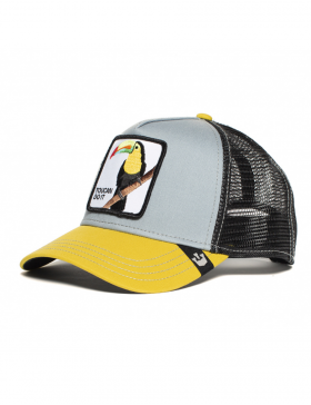 Goorin Bros. Iggy Narnar Trucker cap - Grey